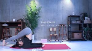 yogapose_halasana_pic