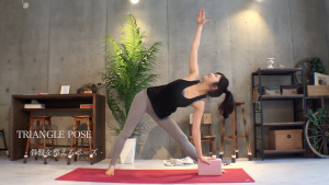 trikonasana_with_block