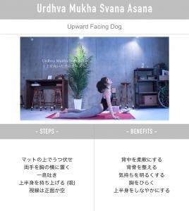 yogapose_updog