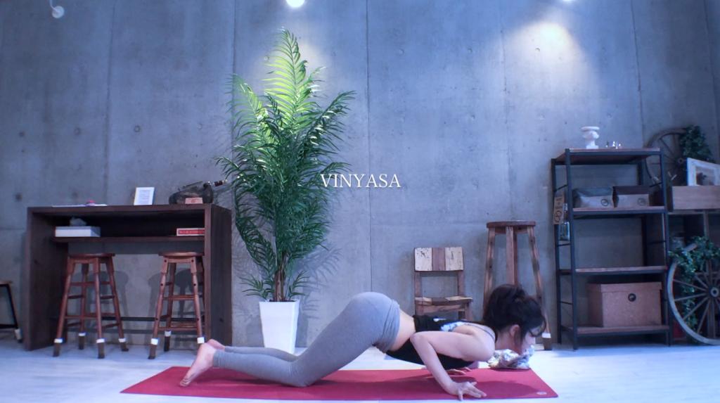 yogapose_ASHTANGANAMASKARA