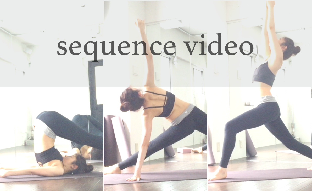 pic_homeyoga_video