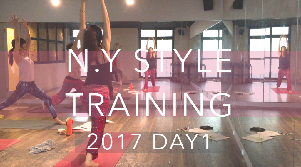 nystyle_training_day1
