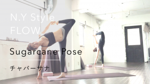 yogapose_sugarcane