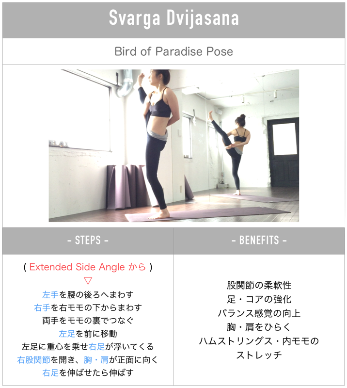 Steps to paradisebird