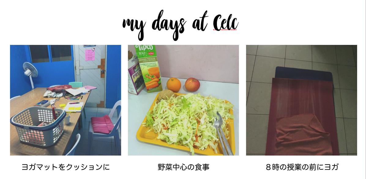Celc mydays