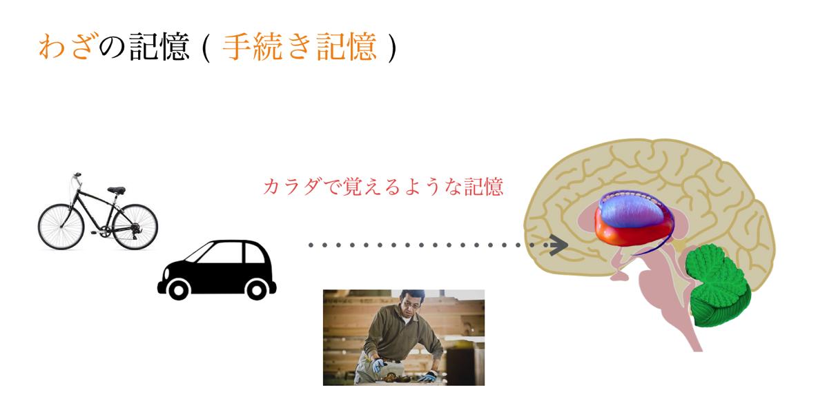 Procedural memory 02