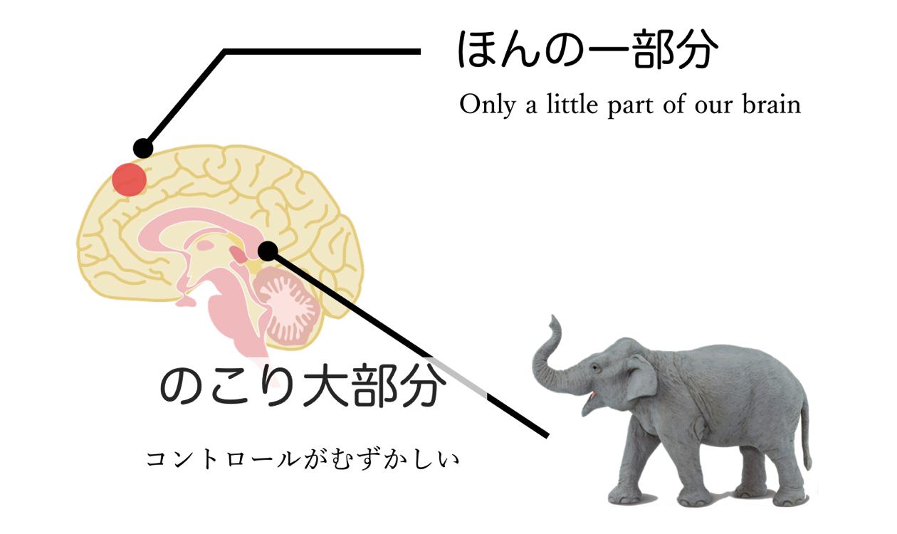 Subconscious mind elephant